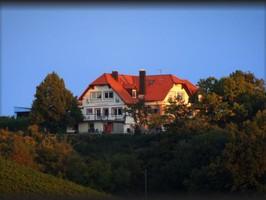 Gästehaus Kirschberghof mit Weinverkauf, Sommerhausen